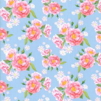 popeline rosen