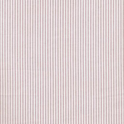 stripes woodrose